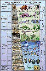 geologic chart